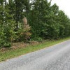 32 Acres of nicely wooded land / financing (Nathalie Va)