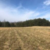 130+ acres in hayfields, woods, creek in Halifax CO (Nathalie)