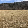 35 acres FARMLAND and HUNTING LAND in Andover NY 4127 Elm Valley Road (Andover, NY)