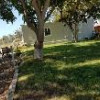 Small house with yard and parking area (burbank)